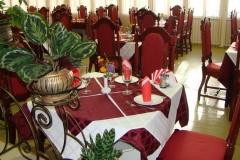 Монерон столовый зал Бордовый