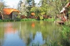 Эко-парк на озере