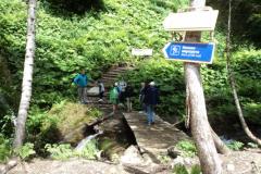 Путь к водопадам